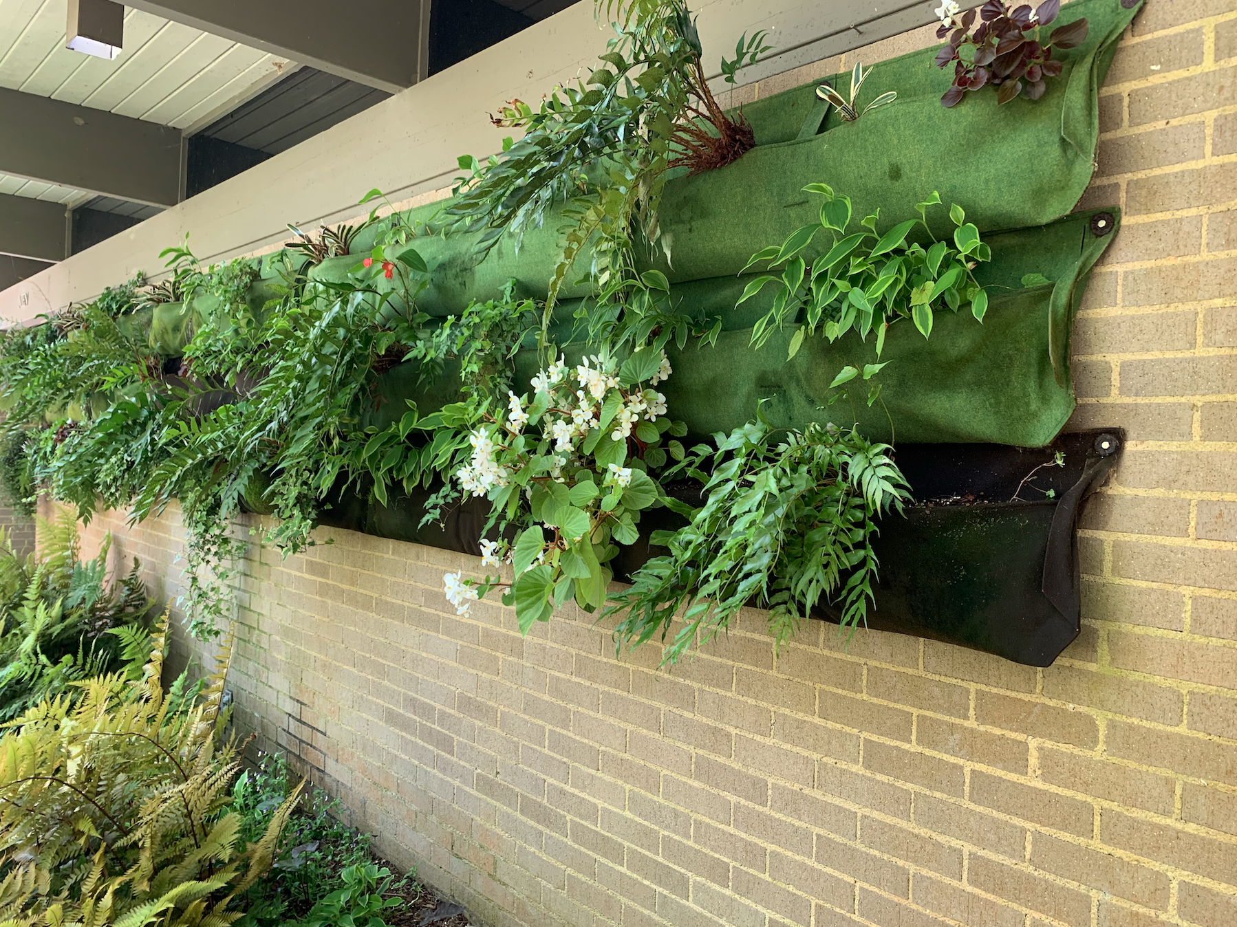 A hanging container display against a brick wall with plants spilling over. The display has three rows of fabric containers. The top row is light green, the middle is dark green, and the bottom is black.